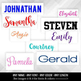 Tumbler Name Vinyl Decal | Choose length of Name •  Many Fonts •  Any Name • Any Color | For Tumblers, Wine Glass and More