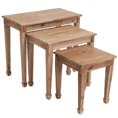 Douglas Acacia Natural Wood Nesting Tables (Set of 3)