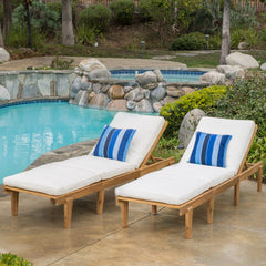 (Set of 2) Paolo Outdoor Teak Brown Wood Chaise Lounge with Cushion