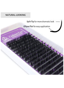 Forabelli Cashmere Eyelash Extensions - 16 Rows  Mix CC / 0.15mm x 8 ~15mm