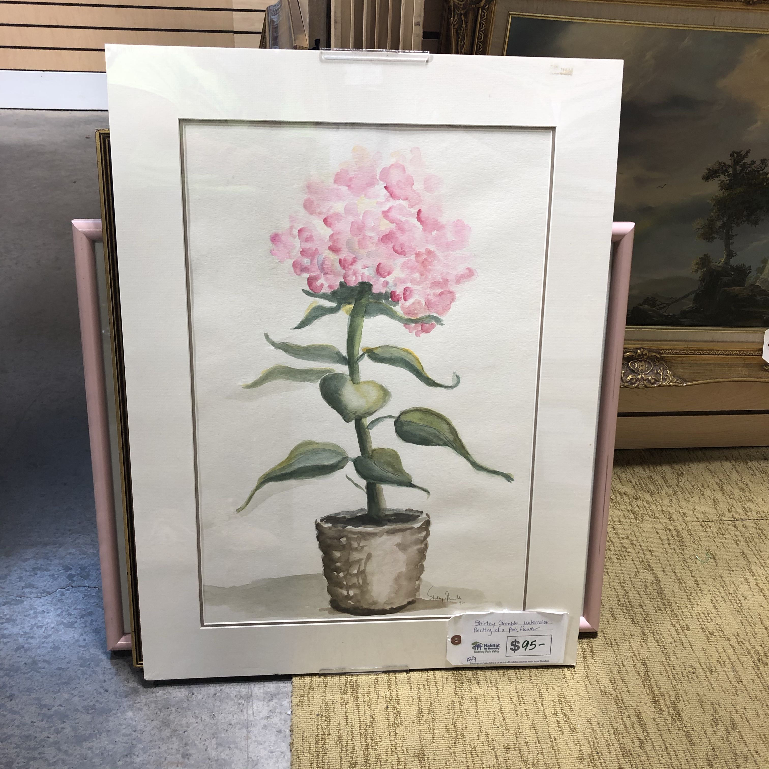 Shirley Grimble Watercolor Painting of a Pink Flower