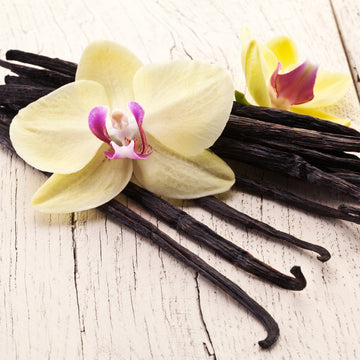 Vanilla Candle Fragrance Oil