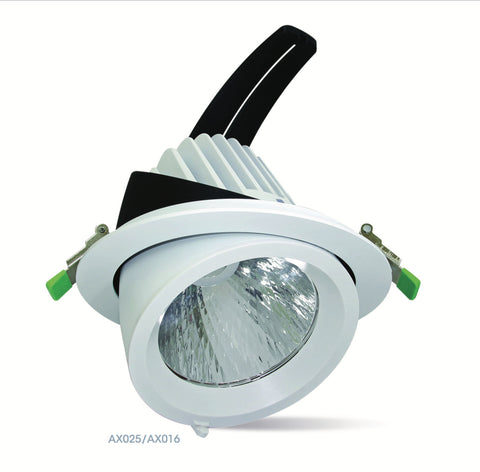 Amitex 40W LED Adjustable Wallwasher - LED Bulb Centre Ltd