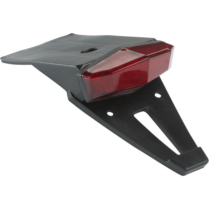 Edge 2 Tail Light & Holder