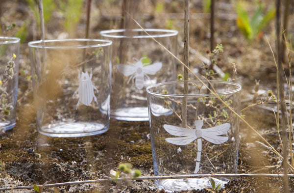 Engraved Insect Glasses Set