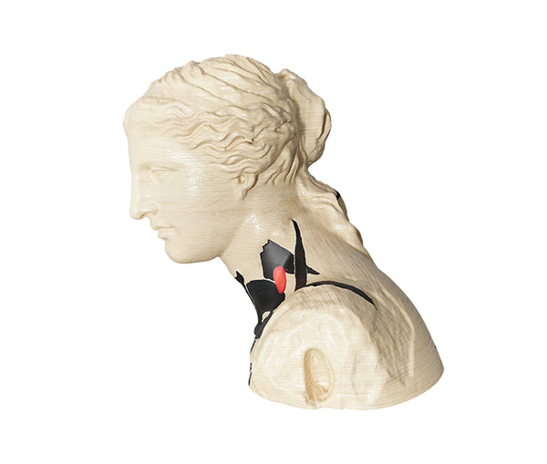 Venus Natural Figurine Decor