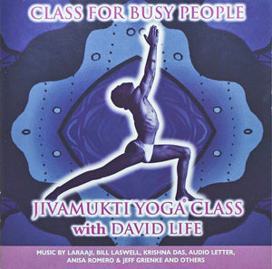 """Class for Busy People"" Jivamukti Yoga Class with David Life"