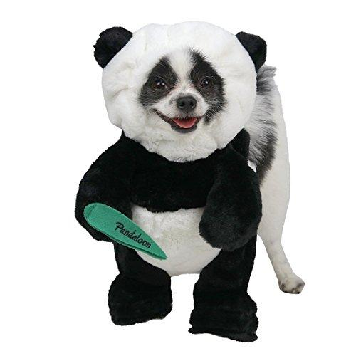 The dog cat panda