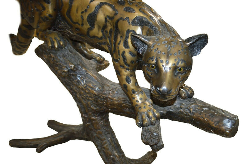 Bronze Jaguar on Limb - Amazing Detail