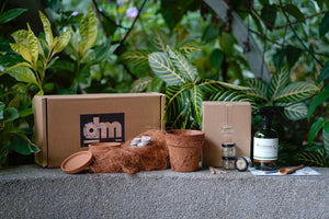 *NEW* ohmBox Subscription GROWTH BOX