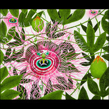 Load image into Gallery viewer, PASSION FLOWER