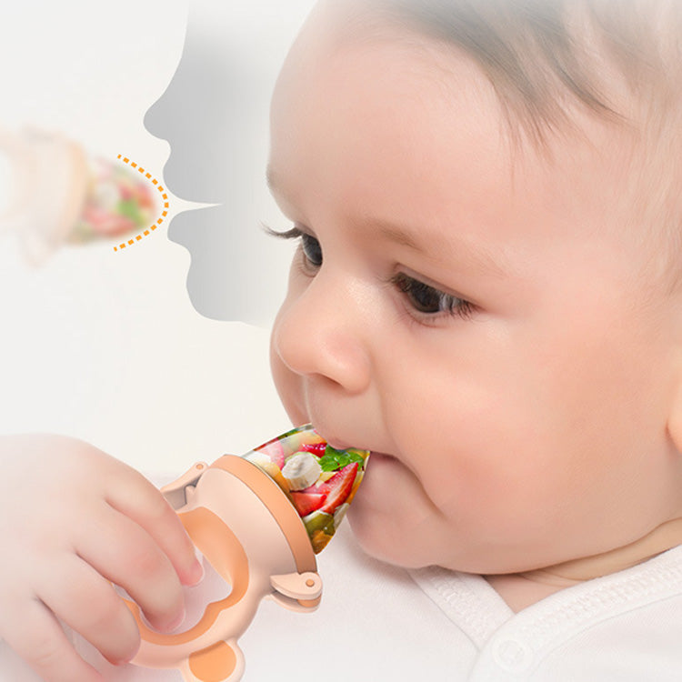 Food Feeder Silicone Teething Pacifiers | kidzful