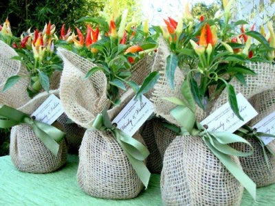 flowers in burlap bags
