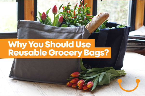 8 Reasons You Should Use Reusable Grocery Bags