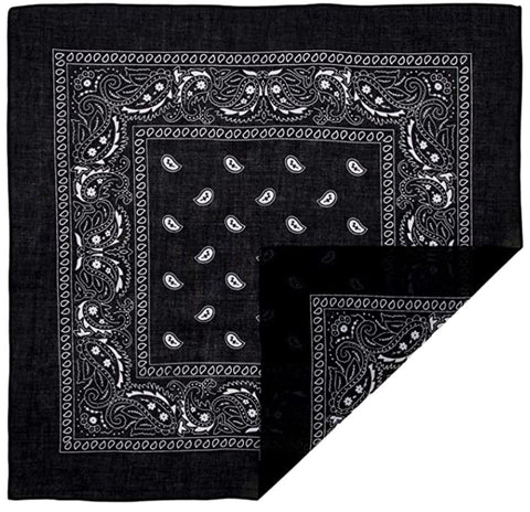 120 ct 100% Cotton Paisley Bandana - By Dozen