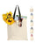 Wholesale Cotton Tote Bag with Contrast Handles