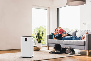 How Investing In An Air Purifier Is As Similar As Investing In Your Health?