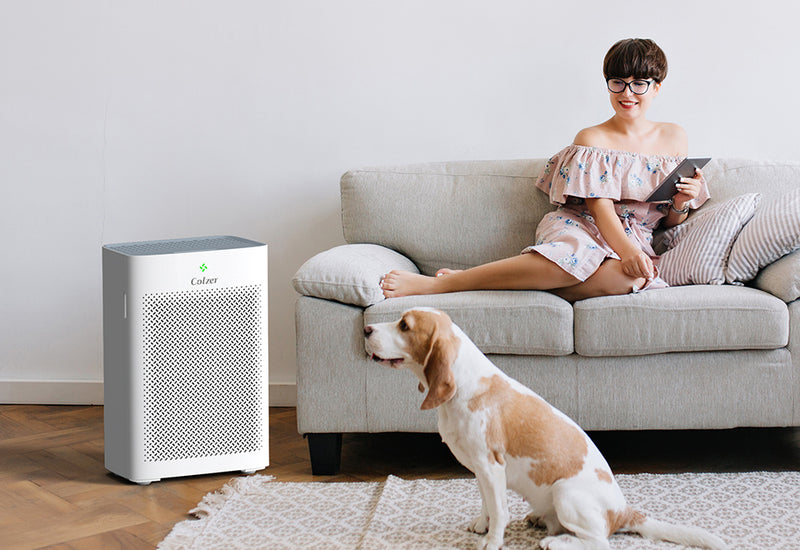Know how smart buyers are choosing air purifiers for their home