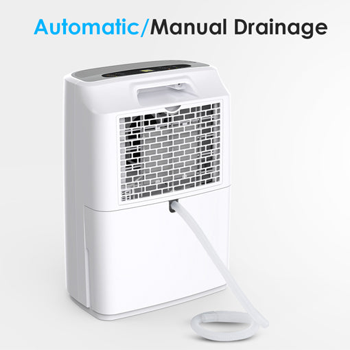 dehumidifier-automatic
