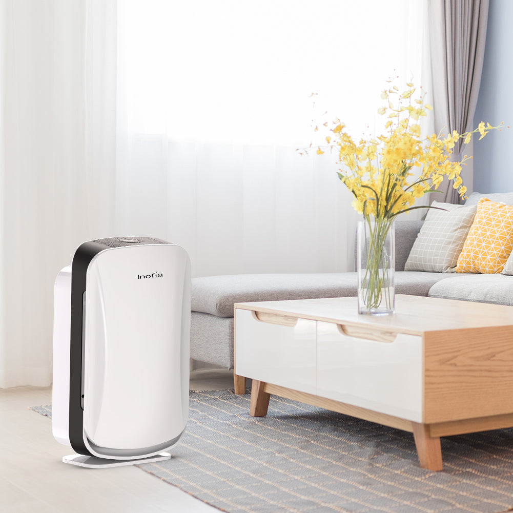 HEPA Air Cleaner For Home Large Room - Colzer