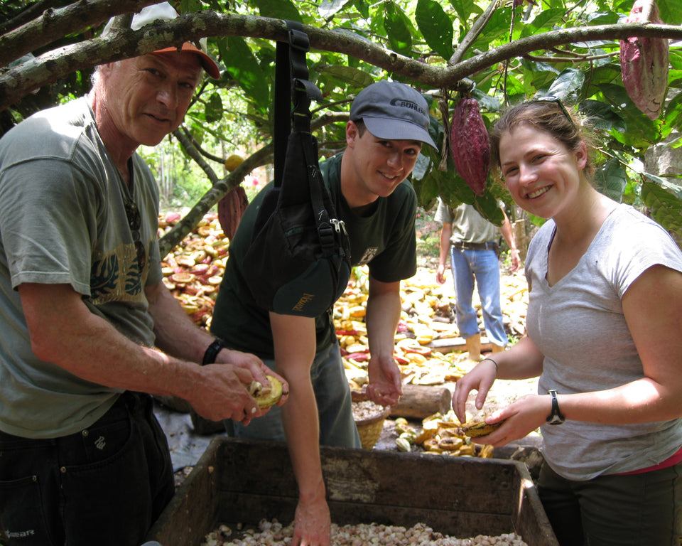The Guittard Chocolate Family inspecting cacao beans