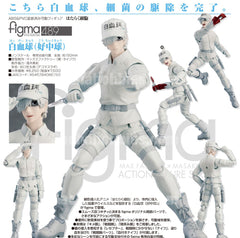 Figma Cells at Work White Blood Cell Neutrophil (Pre-order)