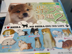 No Shiba Inu No Life Collection Figure 10 Pieces Set (In-stock)