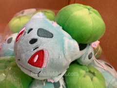 Pokemon Bulbasaur with Yellow Heart Plush (In-stock)
