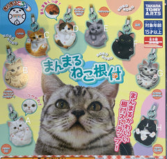 Manmaru Animals Cat Figure Collection 8 Pieces Set (In-stock)