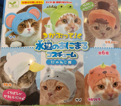 Animal Hats For Cats 6 Piece Set (In Stock)