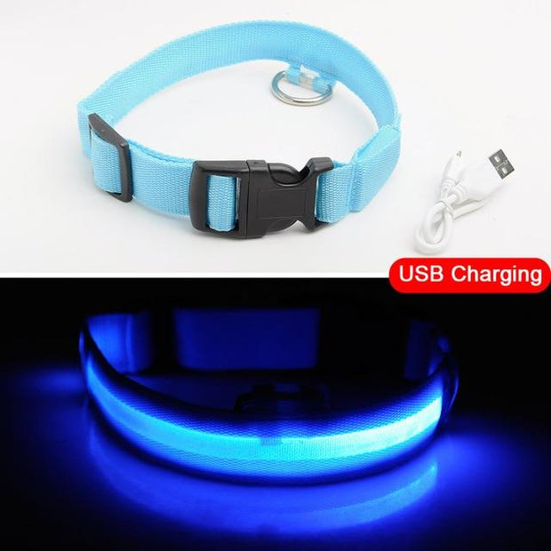 LED Dog Collar (USB or Battery) - Best Quality Pet Dog Snuffle Bowls and Mats Online- Family Pooch