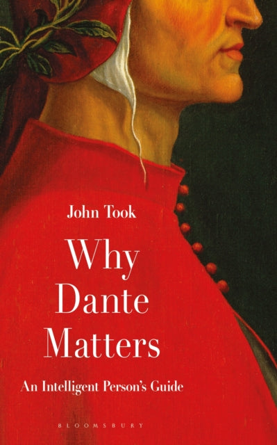 Why Dante Matters : An Intelligent Person's Guide-9781472951038