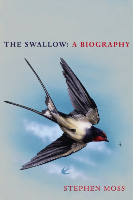 The Swallow : A Biography-9781529110265