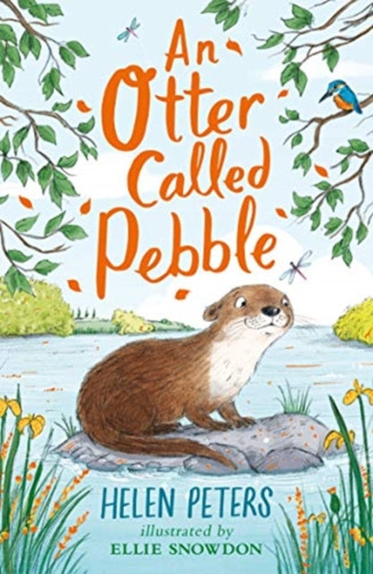 An Otter Called Pebble-9781788001564