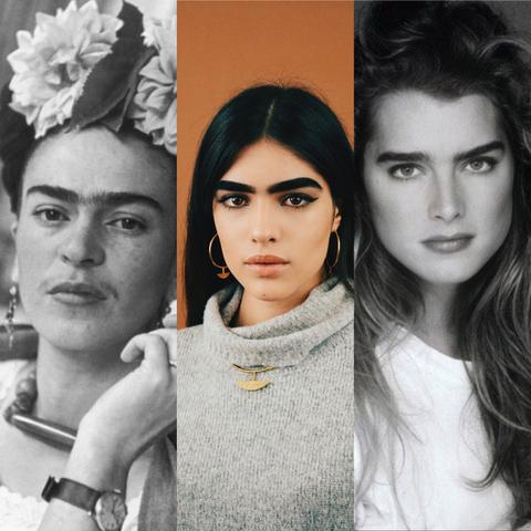 Beautiful Brows and the women that could rock them