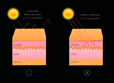 The Difference Between Chemical and Mineral Sunscreens