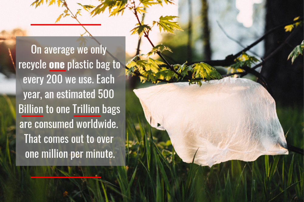 22,000 plastic bags… - Could be removed from the environment if one person used a reusable bag over their lifetime.