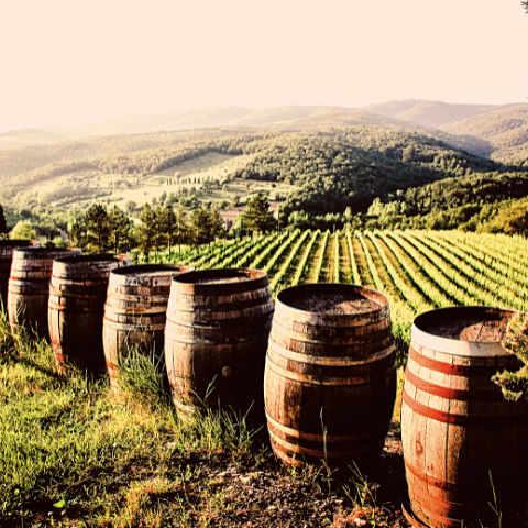 How non alcoholic wine is made 2