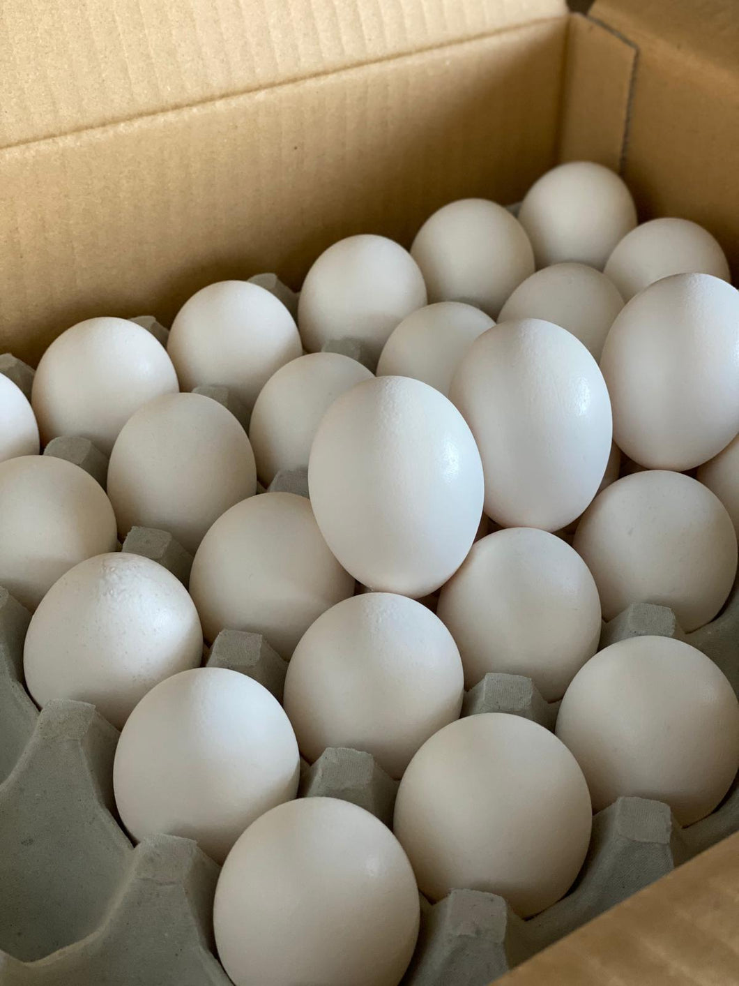 Tsukuba Farm Fresh Vitamin D Japanese Eggs - 165 Eggs/Ctn