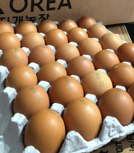 Load image into Gallery viewer, Rainbow Farm Fresh HACCP Certified Korean Eggs - 360 Eggs/Ctn