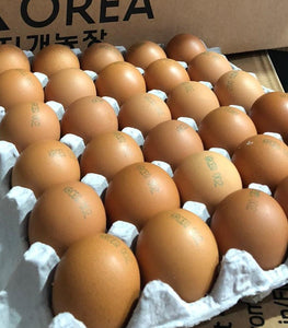 Rainbow Farm Fresh HACCP Certified Korean Eggs - 360 Eggs/Ctn