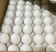 Load image into Gallery viewer, Okinawa Sesoko Youkeijo Farm Fresh Japanese Eggs - 164 Eggs/Ctn