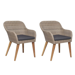 Outdoor Chairs with Cushions 2 pcs Poly Rattan Brown sku 44156