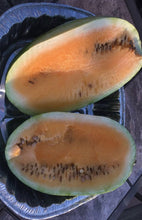Load image into Gallery viewer, Yellow Watermelon
