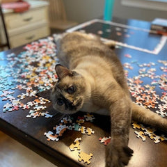Cat stretching out over puzzle