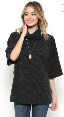 Ces Femme Half Sleeve Turtle Neck Knit Top