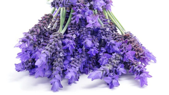 bundle of lavender for skin issues