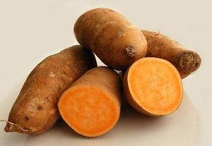 SWEET POTATO WHOLE FRESH (x10kg) - Jackie Leonards