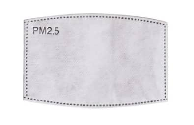 PM 2.5 Face Mask Filter (10-pack)