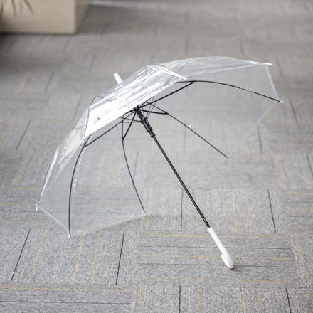 Transparent Umbrella with Long Handle